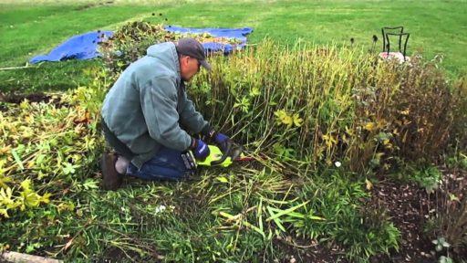 Maxresdefault 18 Fall Garden Cleanup | Dailytexangov