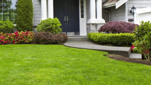 Landscaping Photo 04
