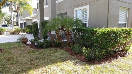 Landscaping Photo 05